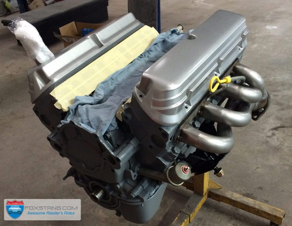 Restored and Detailed 5.0 Engine