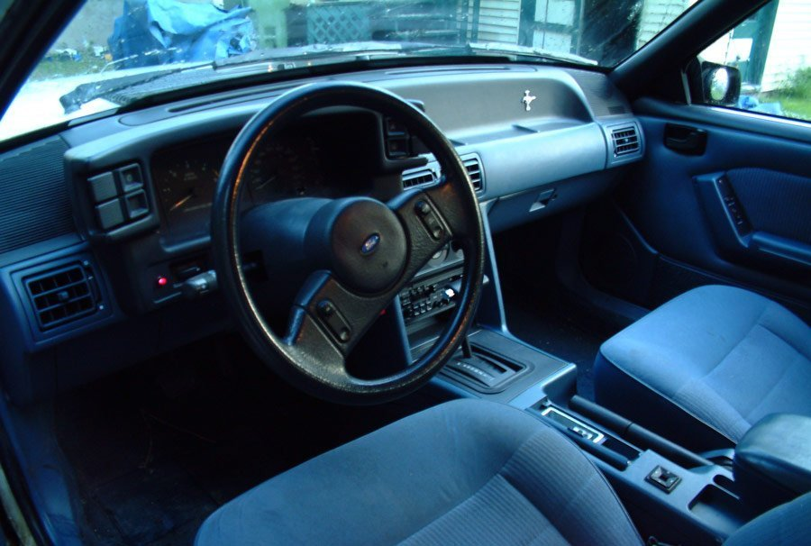 blue fox body interior